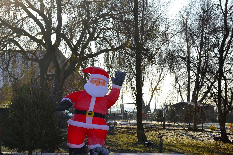 Nordmann Excellent kerstbomen Amstelveen