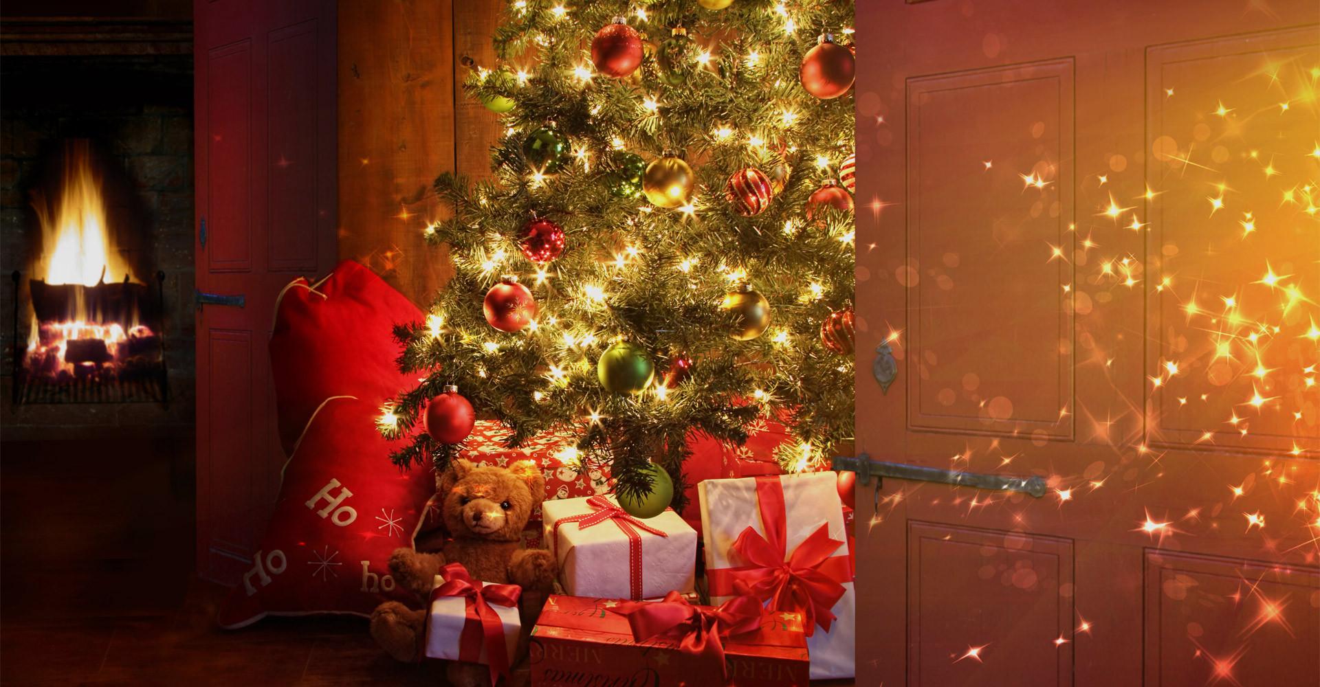 De mooiste Nordmann Excellent kerstbomen in Amstelveen vanaf € 15,-