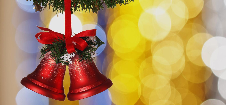 Veelgestelde vragen over Nordmann Excellent kerstbomen in Amstelveen